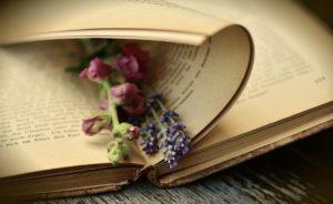 Ecriture : l'arc dramatique du personnage